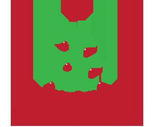 OI Festival of Trees