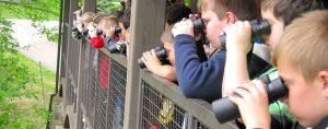 Summer Nature Camps - Oglebay Institute's Schrader Center
