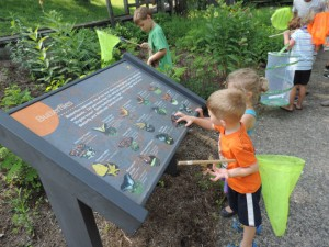 Butterfly Garden - Nature Day Camp