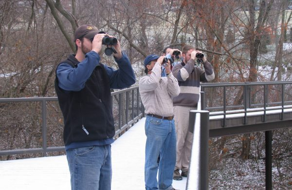 Backyard Bird Count at the Schrader Center, Wheeling, WV