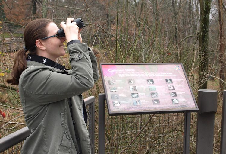Bird Watching Hikes in Oglebay