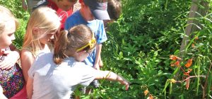 Nature Quest at the Schrader Center, Oglebay