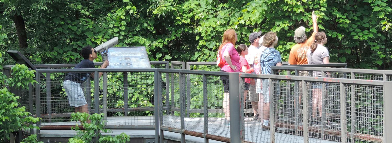 Guided Nature Walk a the Schrader Center, Oglebay