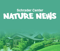 Schrader Center Nature News