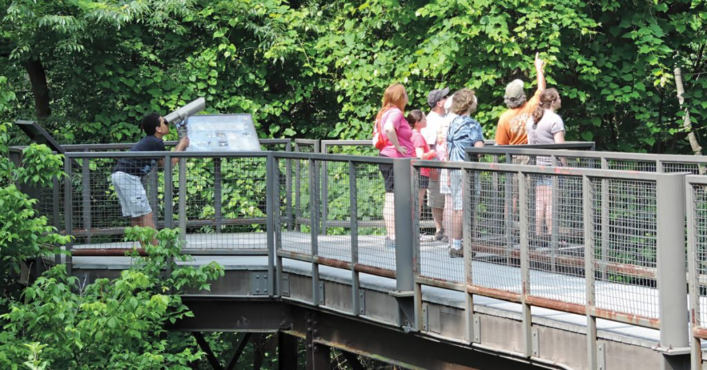 Guided Nature Walk - Schrader Center