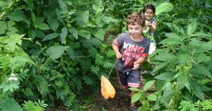 Nature Camps - Oglebay Institute