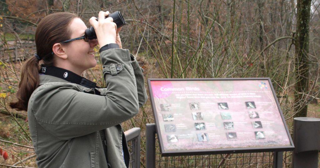 Bird Walks - Schrader Center
