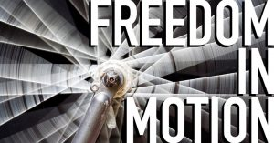 Freedom in Motion - Stifel Fine Arts Center