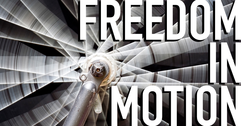 Freedom in Motion - Stifel Fine Arts Center